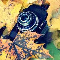 قالب وبلاگ عکاسی - قالب حرفه ای 73